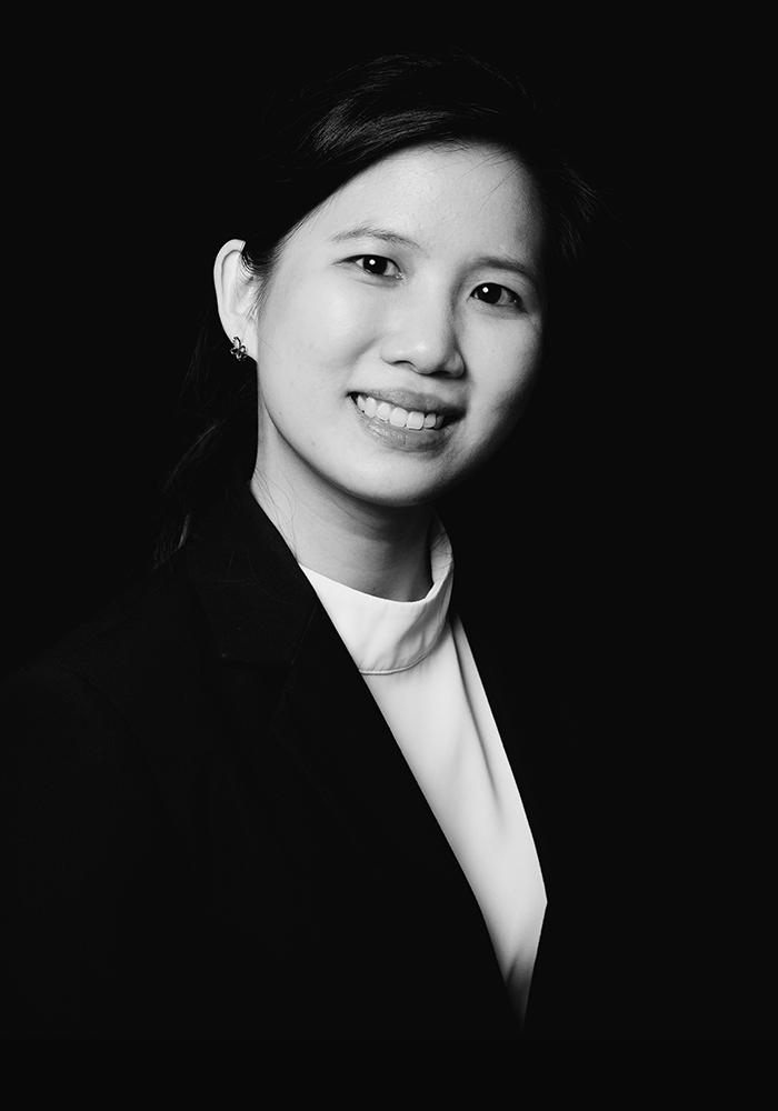 litigation lawyer law firm civil law commercial law Discussion